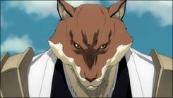 215 - ¡Defended el pueblo de Karakura! Aparecen todos los Shinigamis